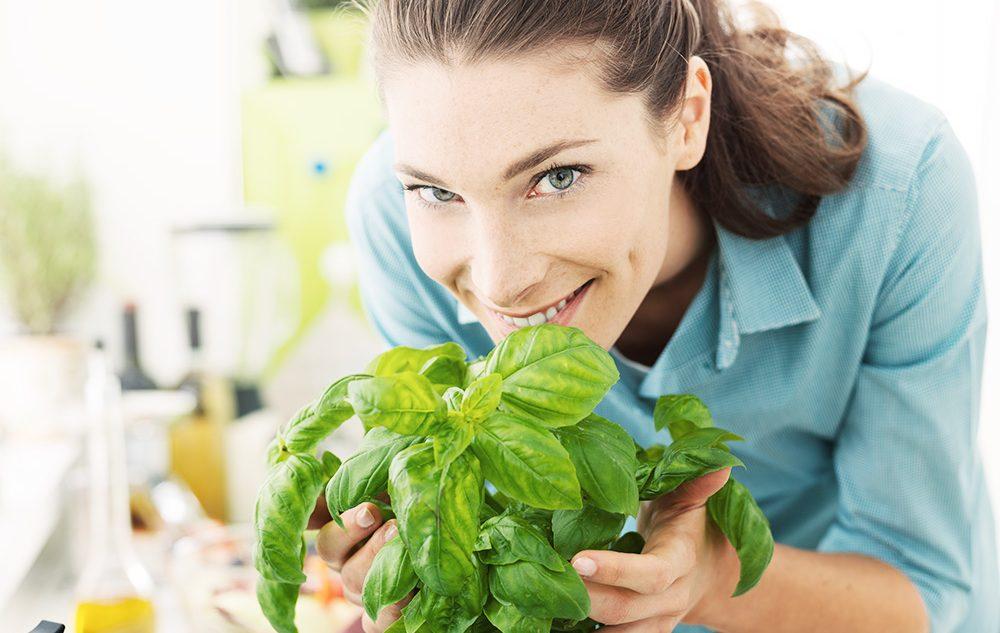 jak dbać o zioła w domu